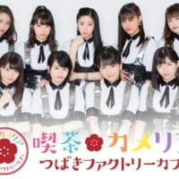 つばきファクトリーカフェ「喫茶カメリア」が、デビュー日の2月22日に原宿で期間限定オープン!